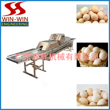 TD-45X Automatic Egg Cleaning Machine/Duck Egg Washing Machine