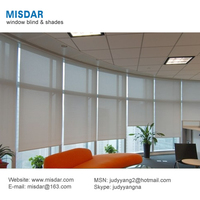 Polyester & PVC Manual Roller Blinds, Chain roller blind, Blackout roller blind