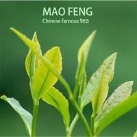 Long Leaf Factory Chinese Organic Green Tea Wholesale