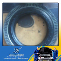 Truck rear wheel hub oil seal 100*140/166*16/22 for Japanese repairments Aging-resistant mechanical oil seal