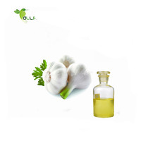 Best selling product factory directly supply pure garlic oil extraction