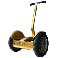 boys self-balancing electric powerful camping scooter