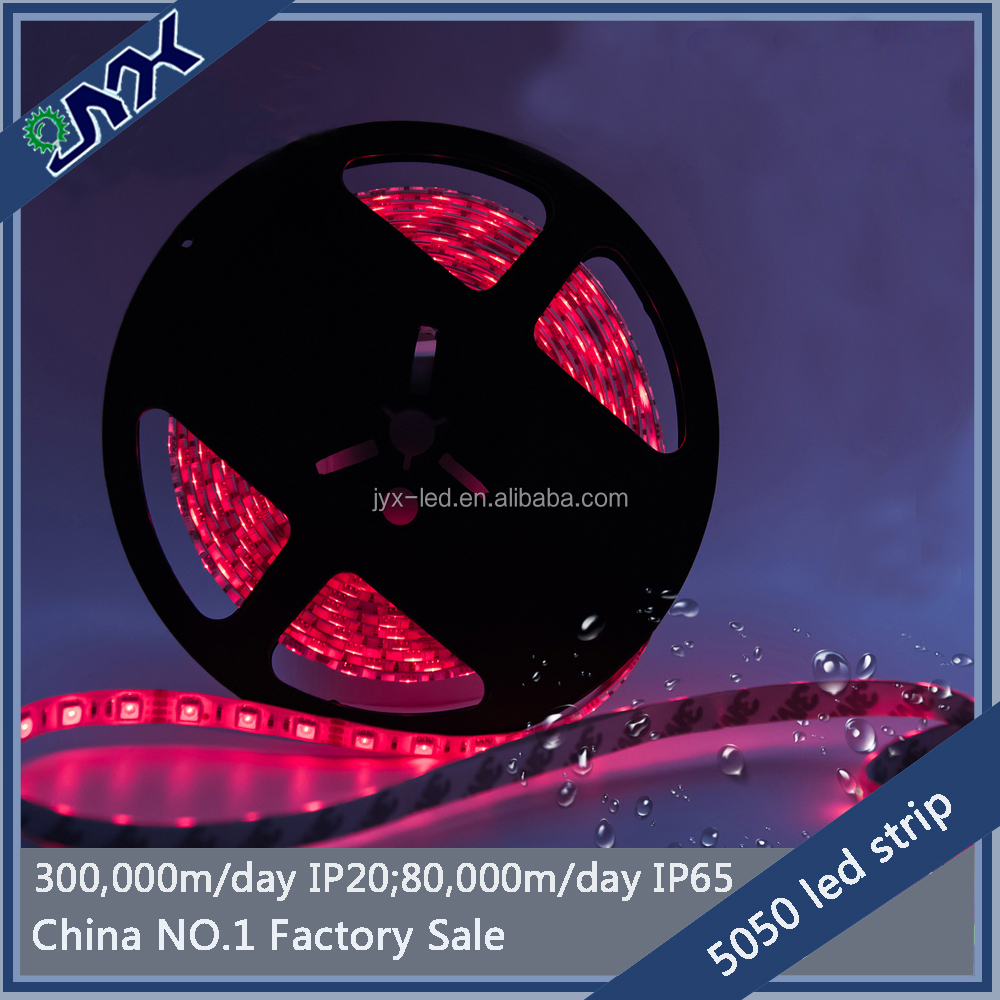 24 volt led strip lighting 5050 60led/m double pcb 3 chip white /warm white /cool white /red /green /blue
