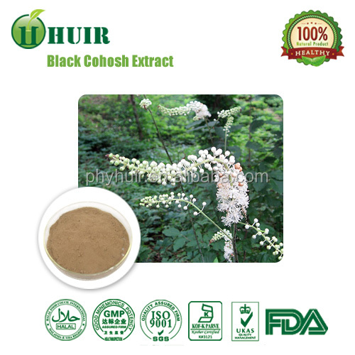 GMP factory Black Snakeroot Extract