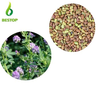mu xu hot sale animal feed grass Forage Seeds Alfalfa Grass Seed
