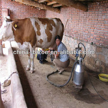 Free for spare parts cow milk machine price in India