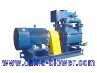 2BE Wholesale Self-Priming Factory Price Pumps