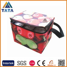 TATA custom insulate animal shape lunch cooler bag Manufacturer