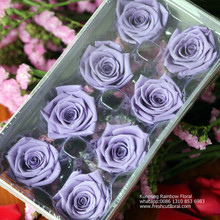 Perfect The Forever Rose Coupon Codes From China Flower Provider For Fundraising Event