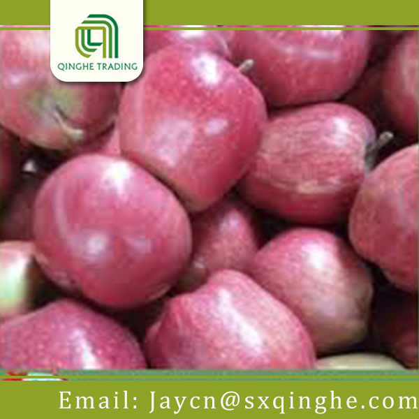 average price sweet Huaniu apple fruit