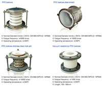 PTFE Bellow Stainless Steel Expansion Joint