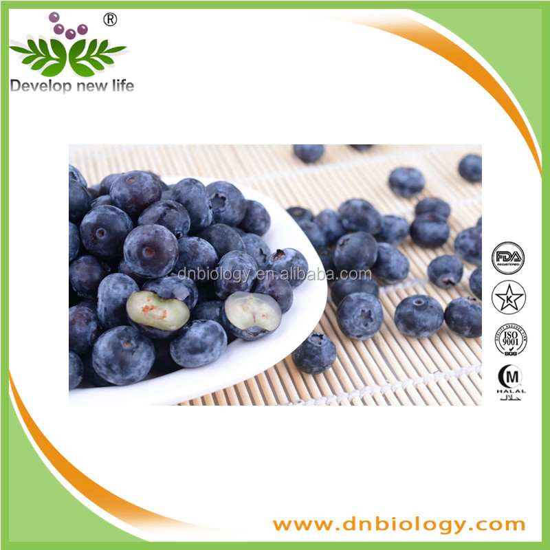 Bilberry extract/100% Natural 15% 25% Anthocyanidin Bilberry Extract/Natural Anthocyanidin 25% Vaccinium myrtillus L Chinese Bil