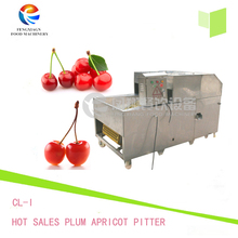 Hot Sales Plum Apricot Pitter