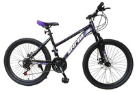 24 LIGHT WEIGHT Steel Mountain bike bicycle with 21 speed