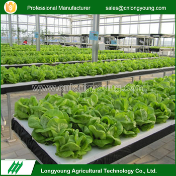 2017 High quality commercial indoor hydroponic growing systems