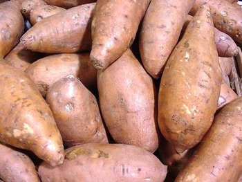 Jamaican Sweet Potato