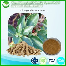 Free sample ashwagandha extract / ashwagandha root extract / withanolides