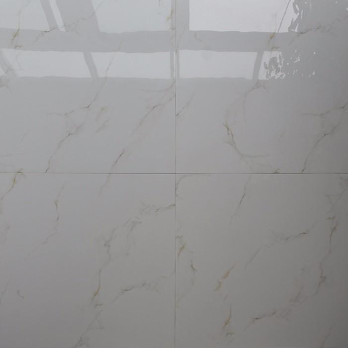 Shiny White Floor Tiles Rebellions