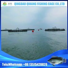 Floating Cages for Fish Farming st Sea