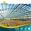 Construction Designed Warehouse Steel Structure