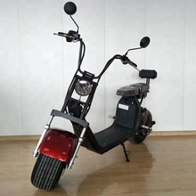Powerful High Speed Lithium Battery Halley Citycoco 2000W EEC electric scooter