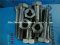 Incoloy 825 901 925 special alloy hex head nut