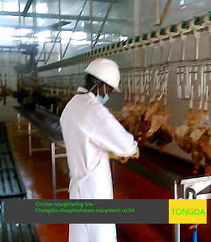 Chicken slaughter equipment