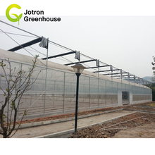 Tunnel Plastic Film Multi-Span Agriculture Greenhouse
