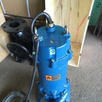 Sanitary Napkins Sewer Grinder Pump Stainless