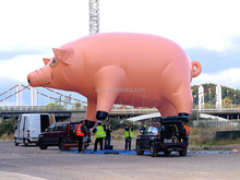 advertising equipment giant inflatable pig balloon,floating pig helium balloon for advertising