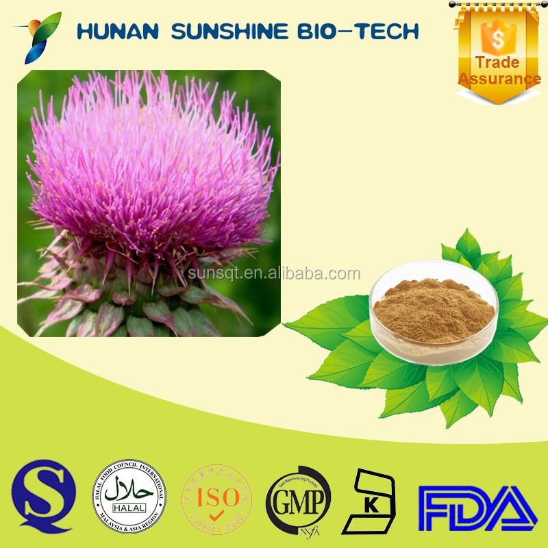 Reasonable price of protecting liver extract powder 80% Silymarin