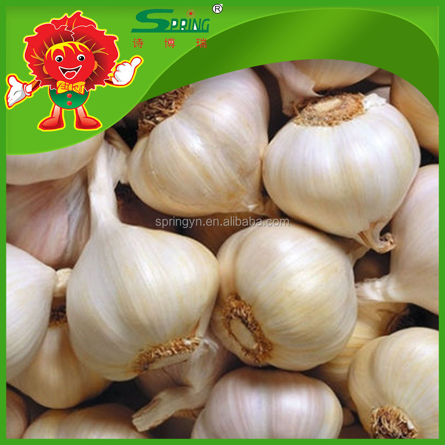 Yunnan Fresh Pure White Garlic & Normal White Garlic 4.5-5.5CM