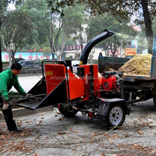 Professional Manufacturing mobile park diesel engine wood chipper price