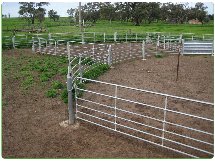 High Quality Galvanized 1800*2100mm Cheap Cattle Panels With Low Price