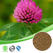 red clover flower extract /red clover extract / isoflavones / red clover extract:formononetin