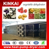 Multi-functional chill processing machine carrot drying machine fruit and vegetable dehydrator machine