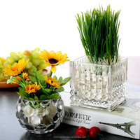 Wholesale100X100MM Decoration Square Garden Pot Flower and Plant Pot