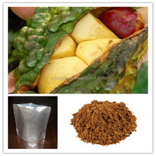 2015 hot sale 100% pure natural 10:1 cola acuminate extract
