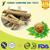 Purity potency and high quality Ashwagandha Extract/Withania Somnifera/Withanolides