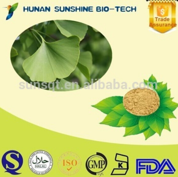 Bulking price dried ginkgo biloba leaves extract powder
