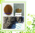 Kelp extract powder(1-10% Fucoxanthin,Kosher Certification)