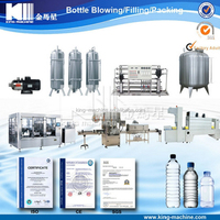 Automatic Water Bottle Filling Machine / Plant Price Cost