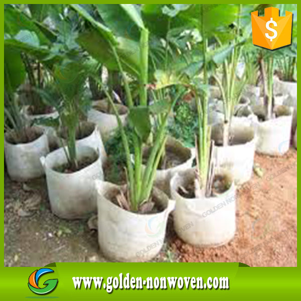 100% polypropylene uv anti agricultural non woven weed control,biodegradable non woven fabric for agriculture use