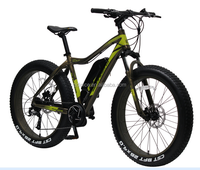 9-speed fat electric tire bike 26x4'' with suspension fork