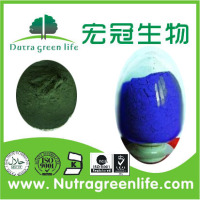 Blue pigment Phycocyanin powder extracted from blue green algae (Cyanophyta) spirulina blue powder