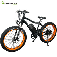26 inch mountain bike E-bike 48V electric bicycle en 15194