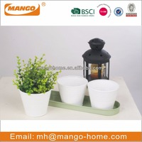 Pantone Color galvanized steel tbale flower pots & planters for gift