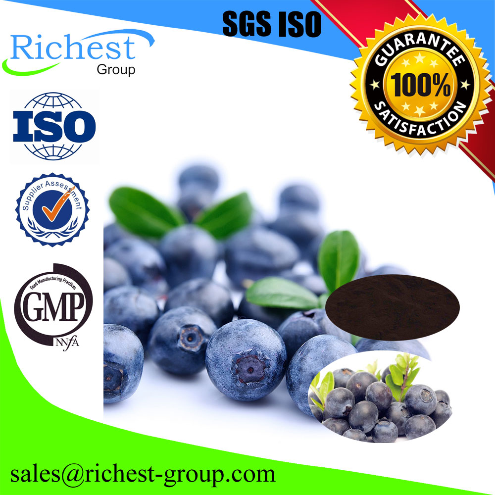 Good Water Solube Bilberry extract