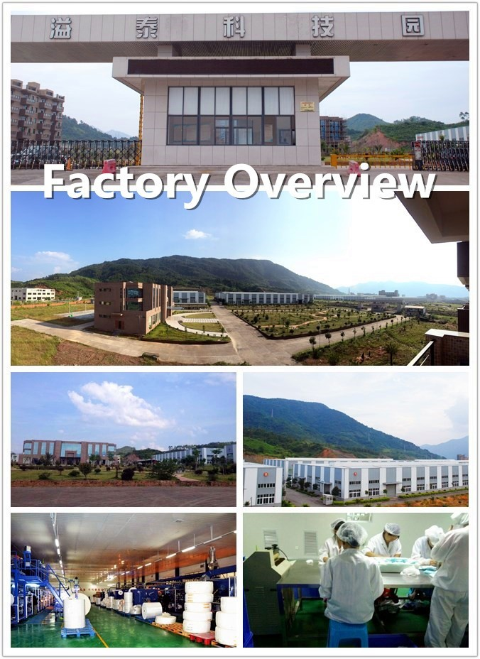 Newest South America Ultra Thin Adult Diaper Factory in China