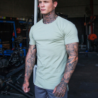 MS-2216 OEM custom Mix and Match Athleisure Aesthetic Gym Wear T Shirts Mens